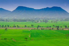 Lanscape ofl ush green rice field and blue sky, In Asia Nature Royalty Free Stock Images