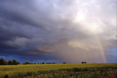 Lanscape with rainbow. Land, sky, cloud and rainbow Royalty Free Stock Image