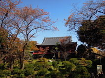 Lanscape in Ueno Park Tokyo Royalty Free Stock Photography