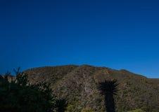 Lanscape van de Zuidelijke Kaap van Zuid-Afrika Stock Afbeelding