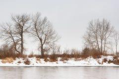 De Dromen van de winter Royalty-vrije Stock Foto's