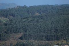 Lanscape w Pontevedra fotografia stock