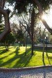 Lanscaped-Garten Stockfoto
