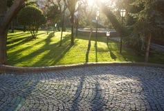 Lanscaped-Garten Stockbilder