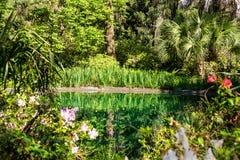 Lanscaped trädgård Arkivfoton