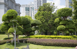 Lanscapes in city. Beautiful landscapes in city background stock photos
