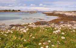Lanscapes from norwegian fjords in the summer - europe travel. Nord Dyroy, Norway - July 31, 2016: Landscape view on beach an old fishing village on a small stock photo