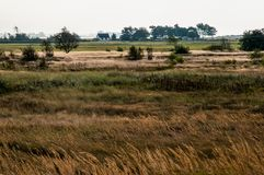 CountryLand by the sea royalty free stock image