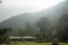Lanscpace en mountian alishan Fotografía de archivo libre de regalías