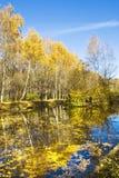 Lansdcape del otoño Imágenes de archivo libres de regalías