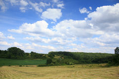 Lansdscape with Haymaking Royalty Free Stock Images