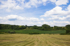 Lansdscape with Haymaking Royalty Free Stock Image