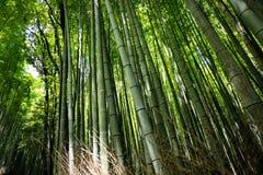 Lanshan Kyoto, Japan stock fotografie