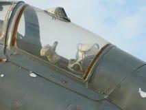 Lansiär för MiG 21 ut ur kommissionen som används som en garnering, nära Cluj, Arkivfoto