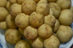 Lansium domesticum or Longkong is the Thai tropical fruits royalty free stock photos