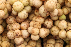 Lansium parasiticum (长的孔),热带水果 免版税库存照片