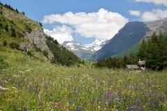 LANSLEVILLARD, FRANCEÂ: Landschap met kleurrijke bloemen in de voorgrond, het Nationale Park van Vanoise, Noordelijke Alpen Stock Foto