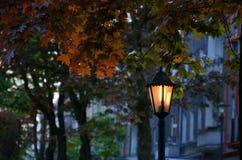 Lantaarn in het avond park Stock Fotografie