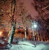 Lantaarn in het park bij nacht Stock Afbeeldingen