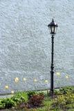 Lantaarn op het gazon Stock Foto