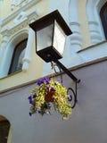 Lantaarn Straten van Minsk Stock Fotografie