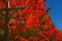 Lantaarnlamp op natuurlijke achtergrond de herfstrood & x22; burning& x22; bladeren royalty-vrije stock afbeelding