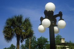 Lantaarnpalen met palmen op achtergrond, Charleston, Sc Royalty-vrije Stock Afbeelding