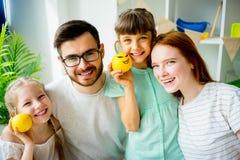 Lantaarns van de familie de snijdende hefboom o Royalty-vrije Stock Foto