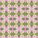 Lantana camara flower Royalty Free Stock Image