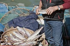 Lantau Fisherman Royalty Free Stock Photography