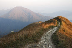 Lantau trail. Trail on Lantau peak, at sunset. Lantau island Hong Kong S.A.R. The light is both warm and cold. Warm light on the herb, and cold light on the Royalty Free Stock Images