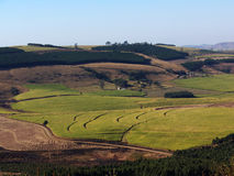 lantbruk Arkivbild