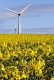 lantbruk Fotografering för Bildbyråer