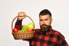 Lantbruk- och höstskördbegrepp Mannen med skägget rymmer korgen arkivbilder