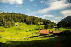 Lantbrukarhem i skog och grässlätt Royaltyfria Bilder
