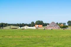 Lantbrukarhem och ängar i polder, norr Holland, Nederländerna Arkivfoto