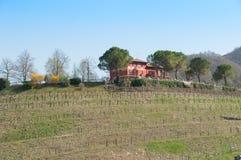 Lantbrukarhem på överkanten av kullen i vår som rundas av prosa Arkivfoto