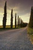 lantbrukarhem tuscan Arkivfoton