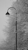 Lantern. Snow-covered lantern against branches in hoarfrost Stock Photos