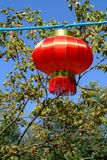 Lantern. In a place called Snow Town near Harbin, China Stock Photography