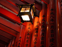 Lantern. A lantern in a wooden gates tunnel in Inari Shrine,Kyoto,Japan Royalty Free Stock Photography