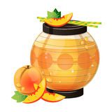 Lantern Apricot Smoothie Stock Images