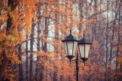 Lantern at autumn time, Kaliningrad Royalty Free Stock Image