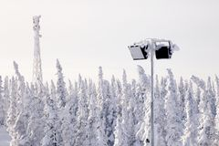 Panoramic scenic view snow-capped trees, hills. Concept Swiss Al stock image