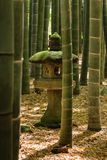 Lantern in bamboo forest Royalty Free Stock Images