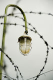 Lantern with barbed wire. Emergency lighting restricted area with barbed wire Stock Photography