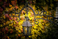Lantern on a background of autumn leaves. Beautiful street lamp, metal forging Stock Images