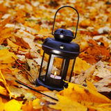 Lantern in bright autumn leafes Stock Photos