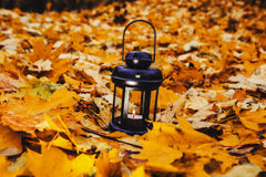 Lantern in bright autumn leafes Stock Photo