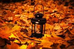 Lantern in bright autumn leafes Stock Images
